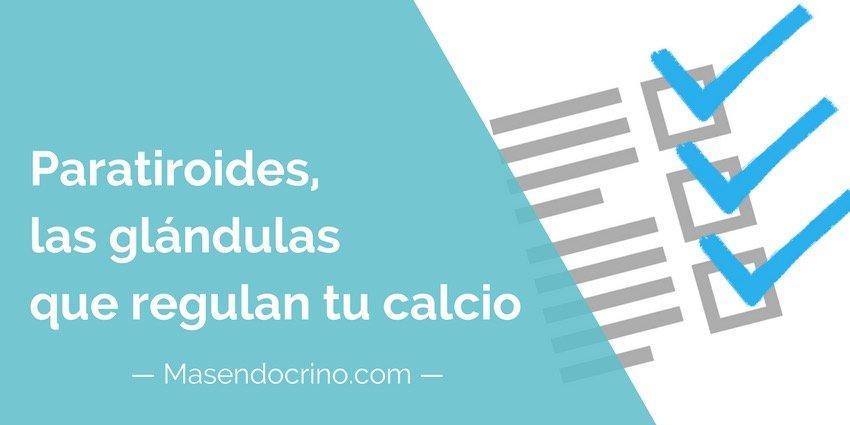 Paratiroides, las glándulas que regulan tu calcio | masendocrino.com